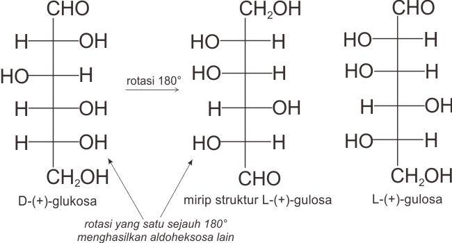 Rotasi D-(+)-glukosa menghasilkan L-(+)-gulosa