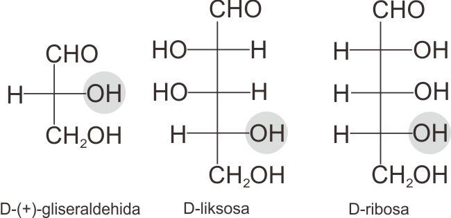 Struktur D-liksosa dan D-ribosa
