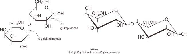 Struktur molekul laktosa