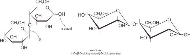Struktur selobiosa