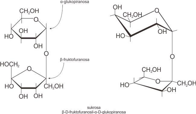 Struktur molekul sukrosa