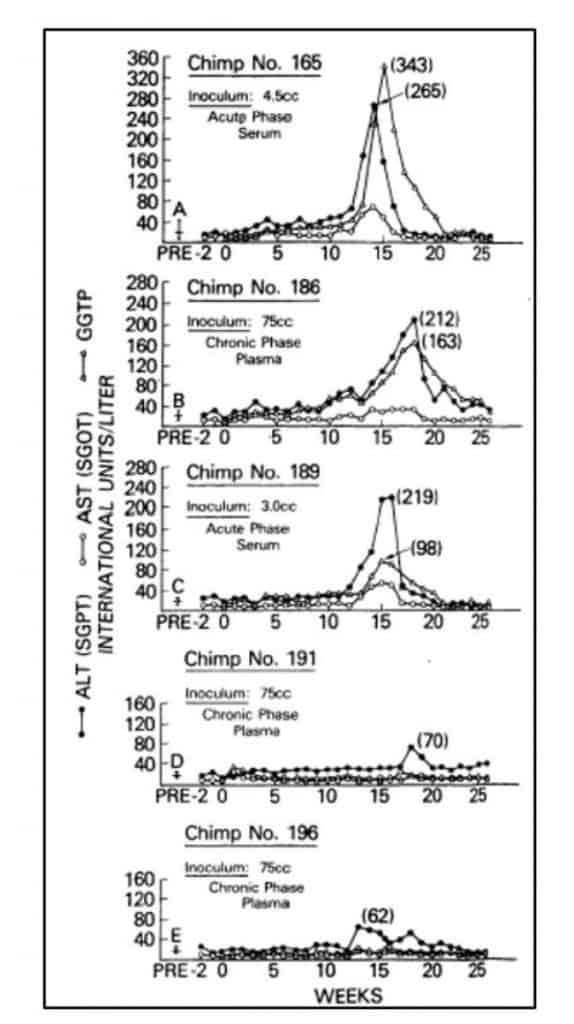 Hasil pemeriksaan AST dan ALT dari simpanse yang diinokulasi serum pasien hepatitis non-A non-B (HNANB)